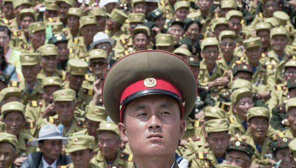 Военнослужащий во время военного парада, посвященного 60-летию окончания Корейской войны, в Пхеньяне. Архивное фото