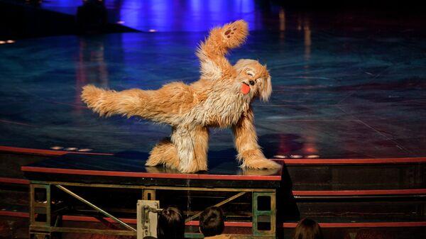 Новая шоу программа Cirque du Soleil Kooza