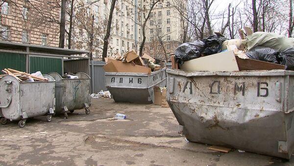Куда и почему исчезли дворники-мигранты из московских дворов