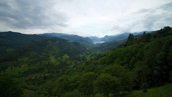Долина Кокора в Колумбии. Архивное фото.