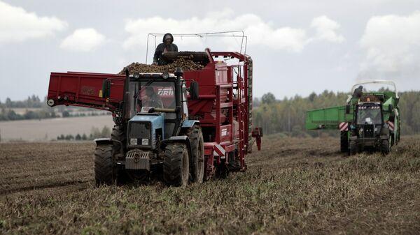 Сельскохозяйственные работы. Архивное фото