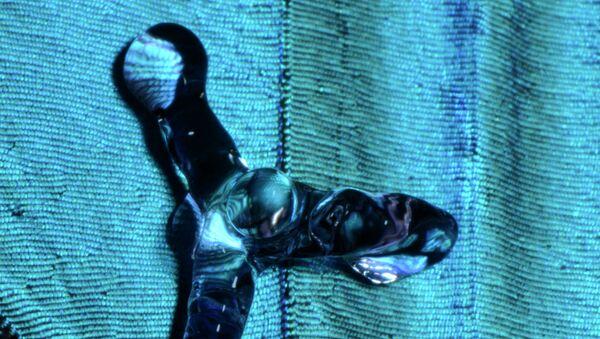 Водоотталкивающее шершавое покрытие на примере крыльев бабочки