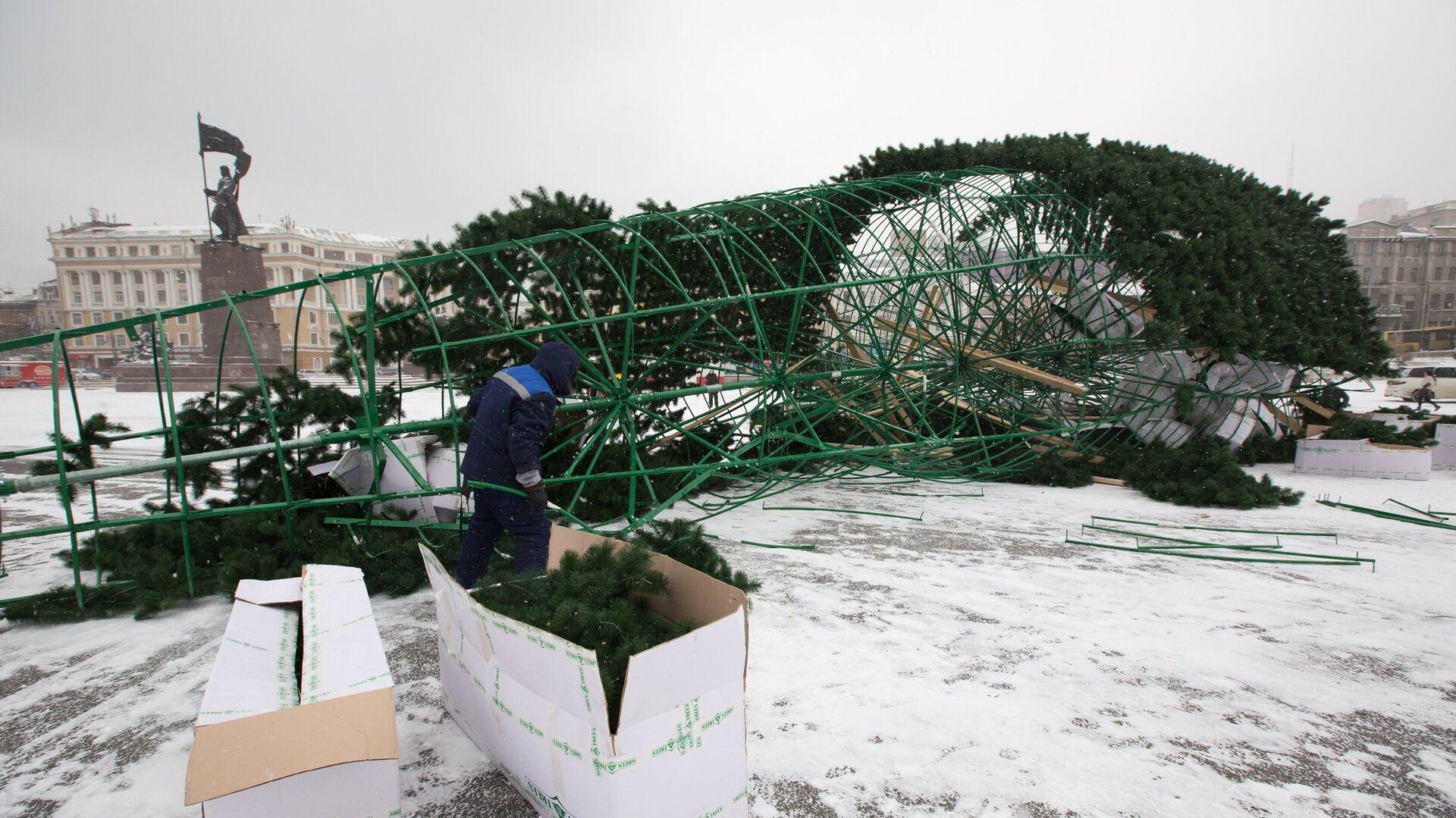 Во Владивостоке упала главная новогодняя елка - РИА Новости, 1920, 11.12.2020