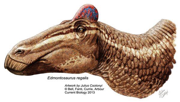 Так выглядит эдмонтозавр в представлении художника