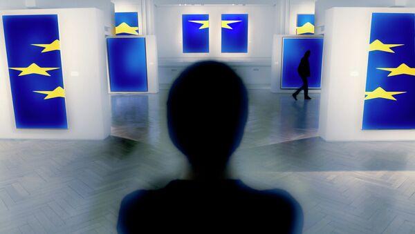 Человек рассматривает фото флагов с символикой ЕС, архивное фото