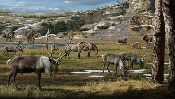 Так художник представил себе мегафауну, населявшую север Евразии и Америки примерно 20 тысяч лет назад