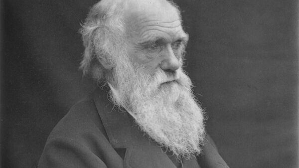 Английский учёный-естествоиспытатель Чарльз Дарвин