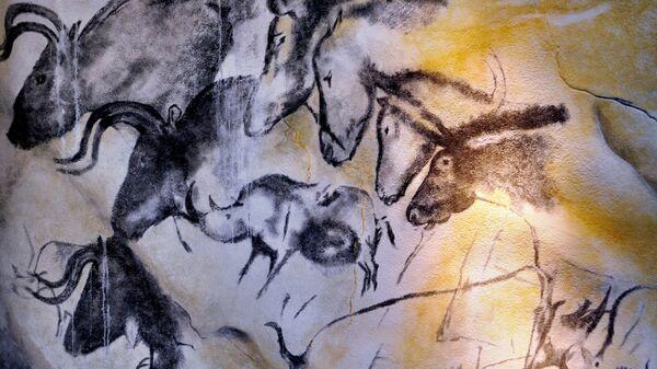 Наскальные рисунки из пещеры Шове во Франции