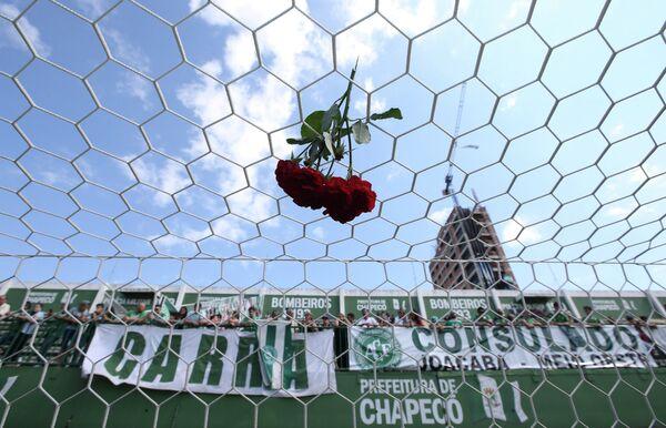 Цветы на сетке ворот домашнего стадиона бразильского ФК Шапекоэнсе
