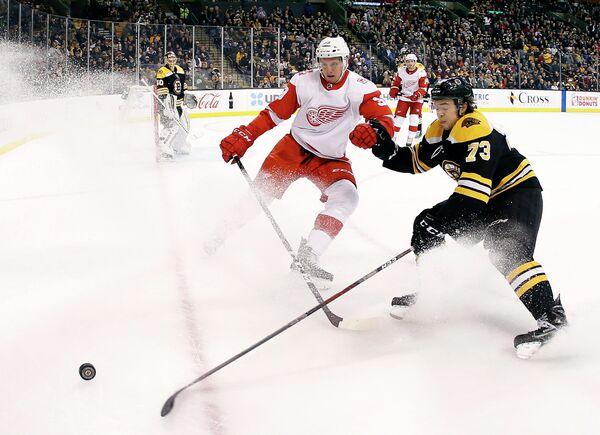 Игровой момент матча НХЛ Бостон Брюинз - Детройт Ред Уингз