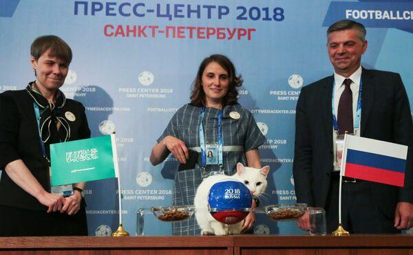 Кот-оракул Ахилл предсказал победу сборной России над Саудовской Аравией