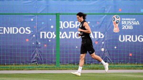 Форвард сборной Уругвая по футболу Эдинсон Кавани