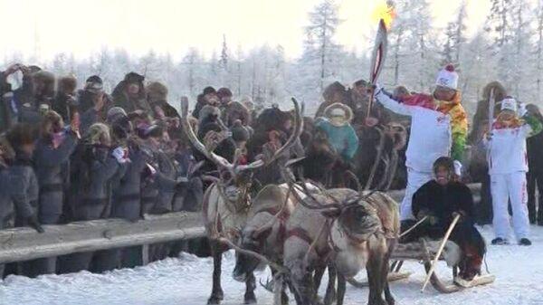 Олени и собаки провезли факелоносцев с олимпийским огнем на Ямале