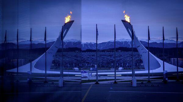 Вид на чашу Олимпийского огня